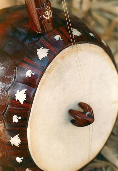 Ectara Custom Built Indian Ectara Schneider Guitars